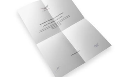 sprawozdanie fundacji - wizualizacja
